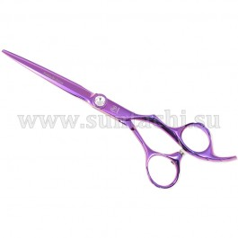 Suntachi Salon Design (5+ класс)